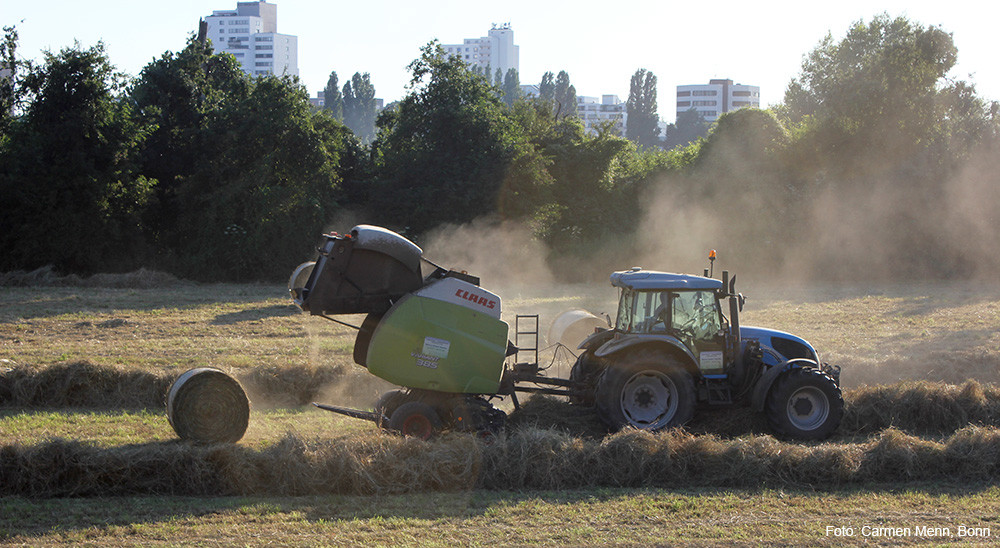 heuernte_traktor_heuballenpresse
